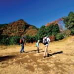 御岳山環境整備ボランティア講習会 28日受講者募集